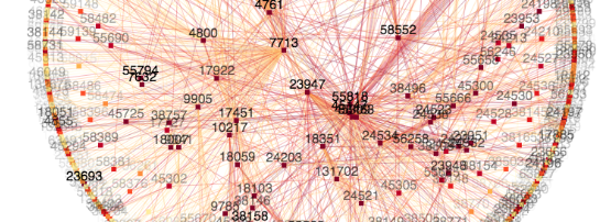 Visualize your country's BGP network with vizAS | APNIC Blog