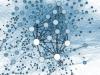 Social_Network_Analysis_Visualization