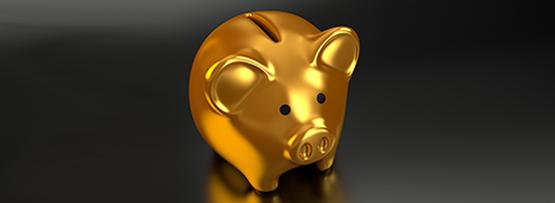 Economic factors affecting IPv6 deployment