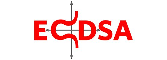 Measuring ECDSA in DNSSEC: An Update | APNIC Blog