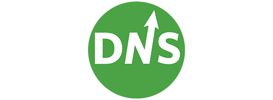 Persistent DNS connections for reliability and performance