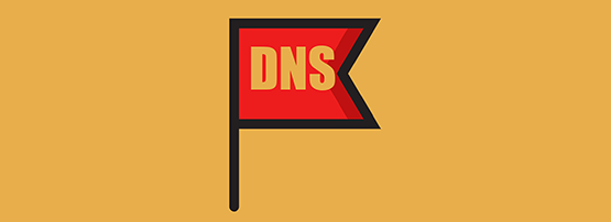 Are you ready for DNS Flag Day? | APNIC Blog
