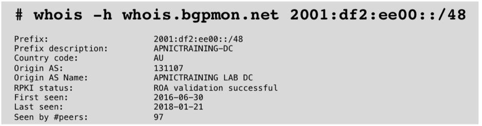 Figure 6 — whois query to BGPMon.