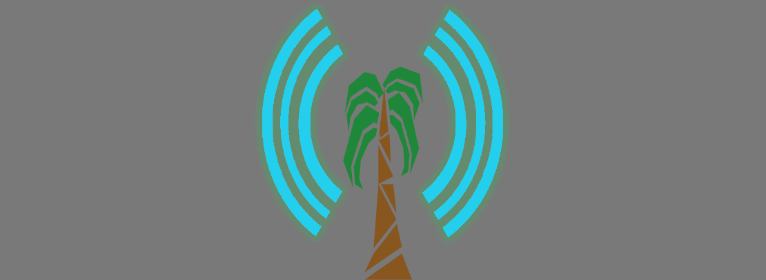 Palmtree router: A secure and private Internet gateway