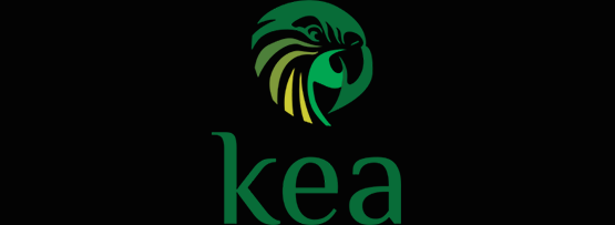 Advanced Kea DHCP features
