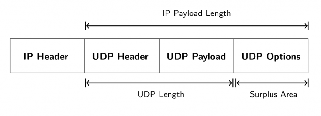Diagram showing UDP Options in IP Payload.