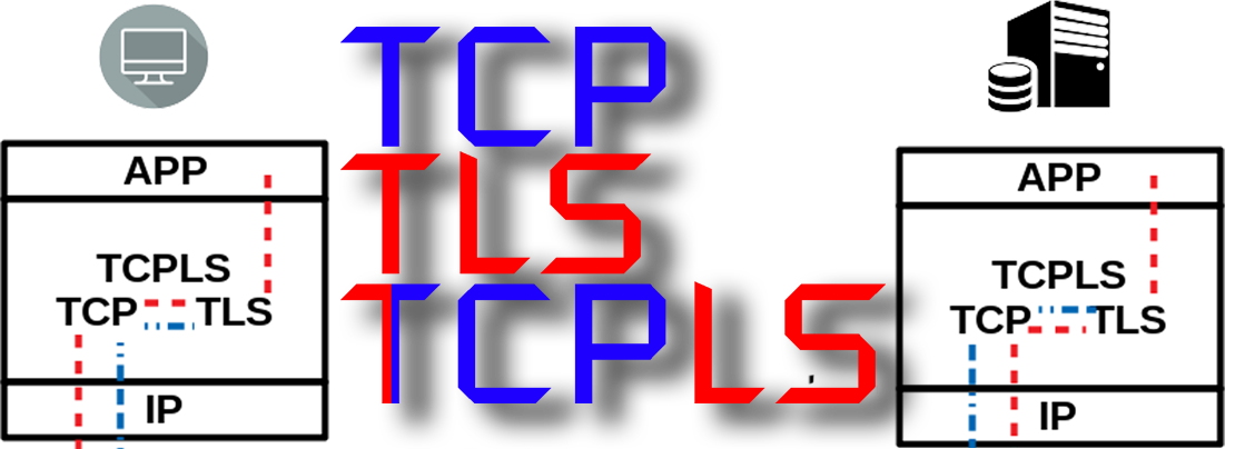 Introducing TCPLS: A game of transport protocols