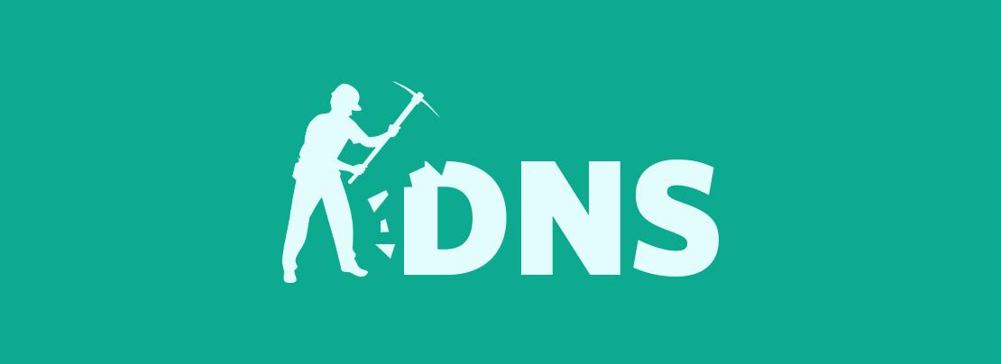 Skidmap and malicious DNS data mining